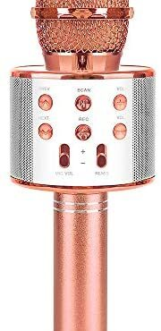 SUNNYPIG Wi-fi Microphone for Younger other folks Singing Occasion Toy – Most appealing Items